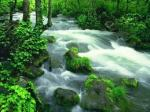 pristine nature